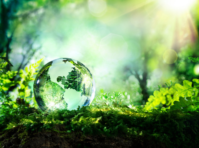 Globe_in_nature_iStock-473454180